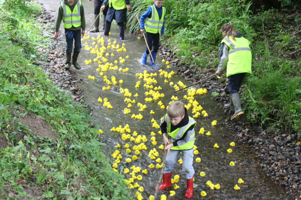 The first duck race of the day well under way.