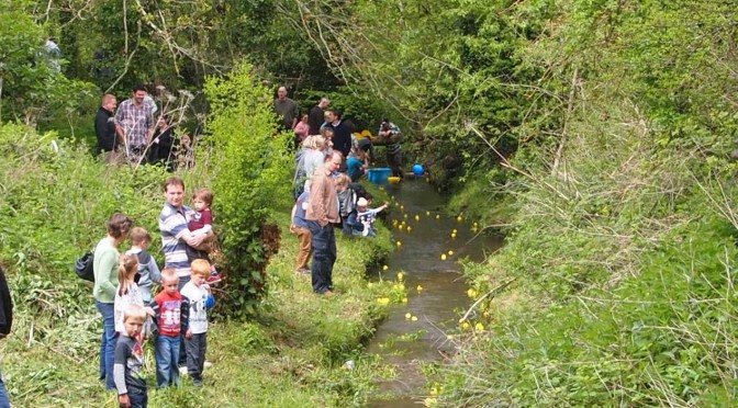Storrington Duck Race 2014