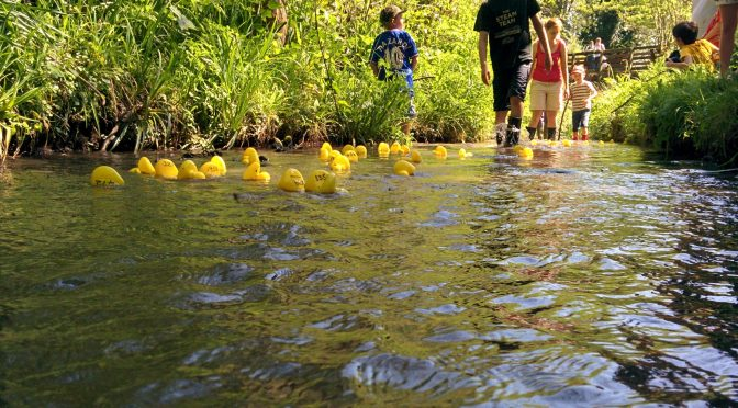 Storrington Duck Race 2016 Final