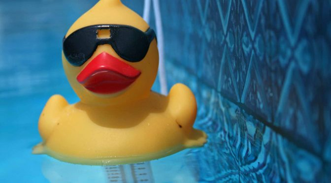 Rubber duck with sunglasses by Daniel Rothamel